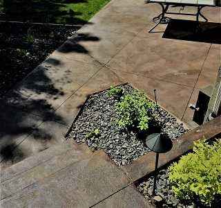 Decorative Concrete Vancouver BC